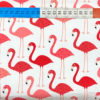 Baumwolle - Robert Kaufman Flamingo pink / weiss